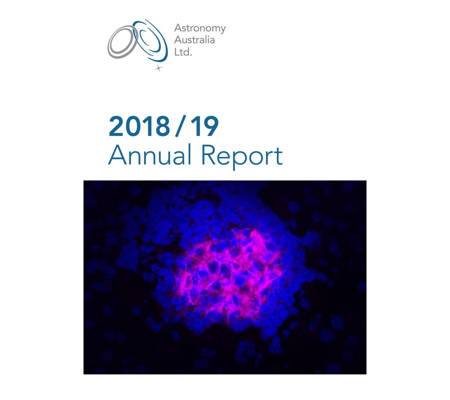 AAL 2018/19 Annual Report
